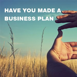haveyou-made-plan-for-business